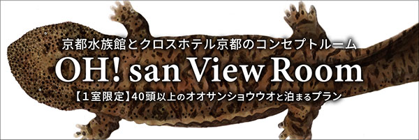 OH! San View Room